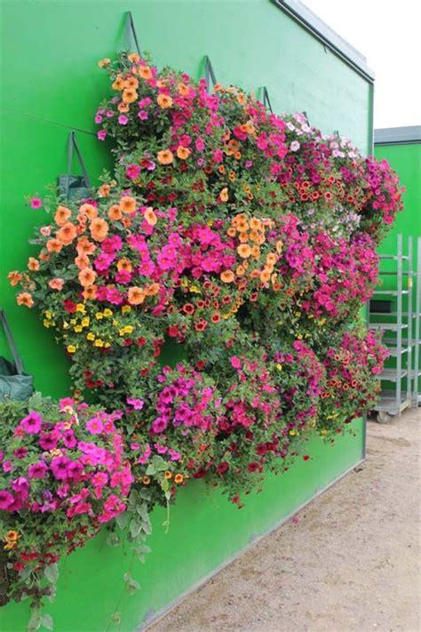 pflanzen zum aufhängen pflanzs 228 cke zum aufh 228 ngen ungew 246 hnliche pflanzgef 228 223 e vertikaler garten pflanzgef 228 223 e und garten