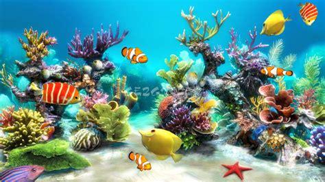 Sim Aquarium Live Wallpaper İndir (android)