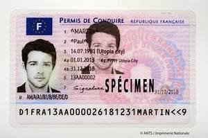 Numero De Permis De Conduire : suivi en ligne du permis de conduire documents permis de conduire permis de conduire ~ Medecine-chirurgie-esthetiques.com Avis de Voitures