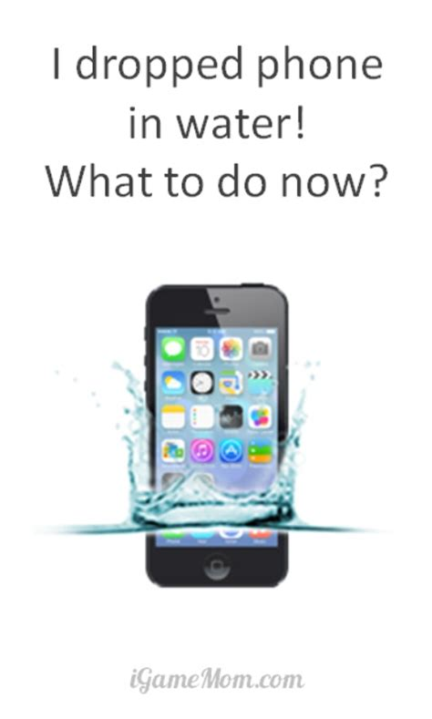how to fix phone dropped in water what to do if you dropped phone in water