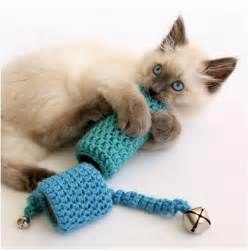 cat toys top 10 diy cat toys top inspired
