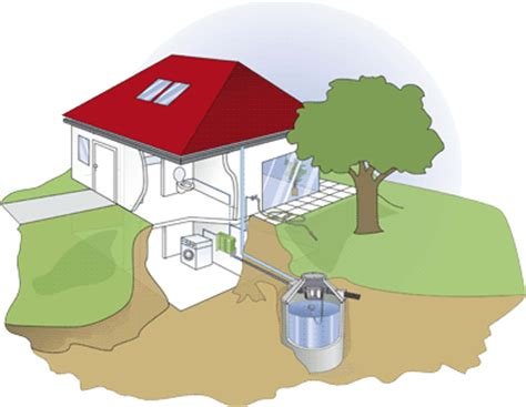 regenwassernutzung regenwasser zisterne