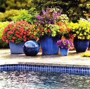 cobalt blue garden pots compliment the swimming pool tile