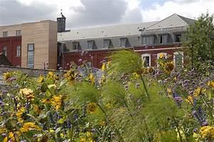 Livraison fleurs roubaixle blog fleursinfo for Chambre bébé design avec livraison de fleurs dans les dom tom