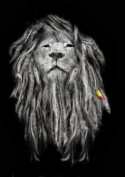 barca wallpapers rasta lion