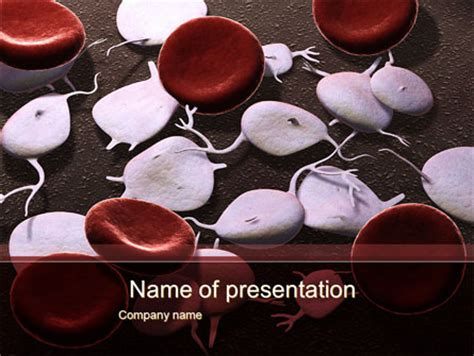 cancer cell cover template red and white blood cells powerpoint template backgrounds