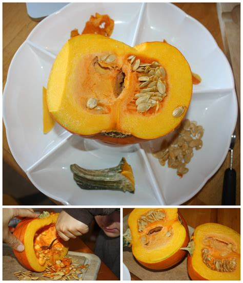 pumpkin activities and learning ideas for fall 295 | pumpkin activities for preschool parts of a pumpkin