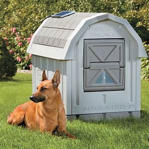 Dog palace insulated dog house the green head for Insulated outdoor dog house