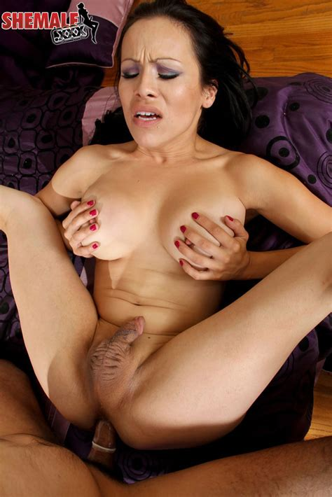 Shemale Xxx X Rated Transsexual Porn Photo