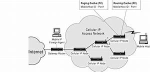 7  Cellular Ip Access Network Architecture