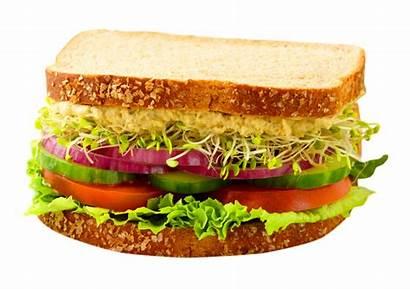 Sandwich Transparent Salad Background Breakfast Bread Pluspng