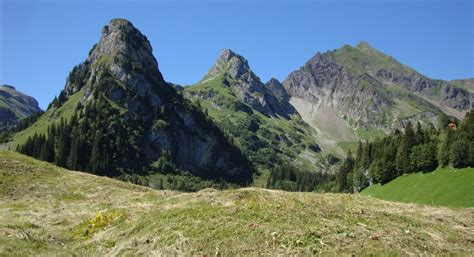 landschaft des jahres  isenthaler wildheulandschaft