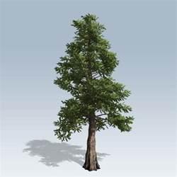 western cedar v7 speedtree