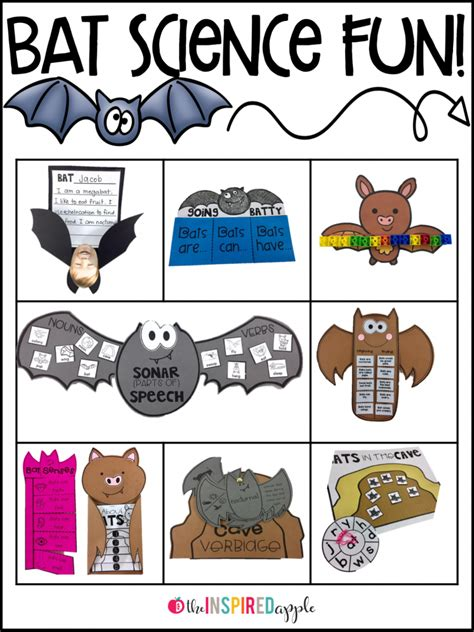 bat activities for primary students the inspired apple 224   Slide4 768x1024