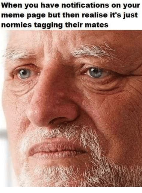 Memes Page - when you have notifications on your meme page but then realise it s just normies tagging their