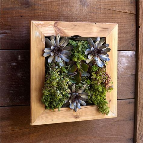 reclaimed barn door vertical wall planter 8 easy ways to create a vertical garden wall inside your home