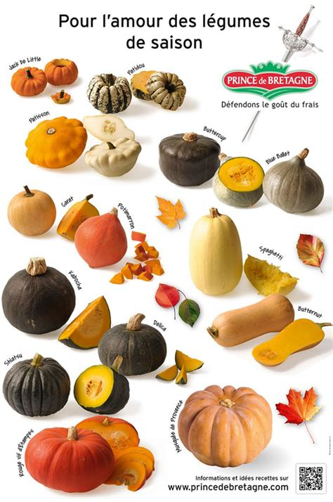 legumes de la famille des potirons quelle courge choisir cuisinons les legumes