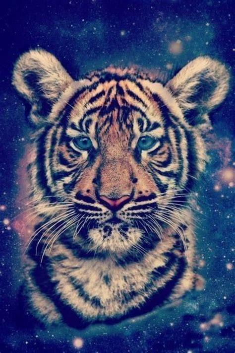 Tiger Galaxy Wallpaper Wallpapers Pinterest