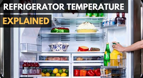 What Should Your Refrigerator Temperature Be?