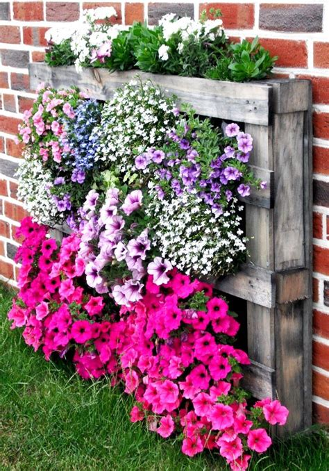 flower garden ideas images  pinterest