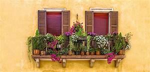 garten tipp balkonkasten bepflanzen allyouneed magazin With französischer balkon mit garten magazin