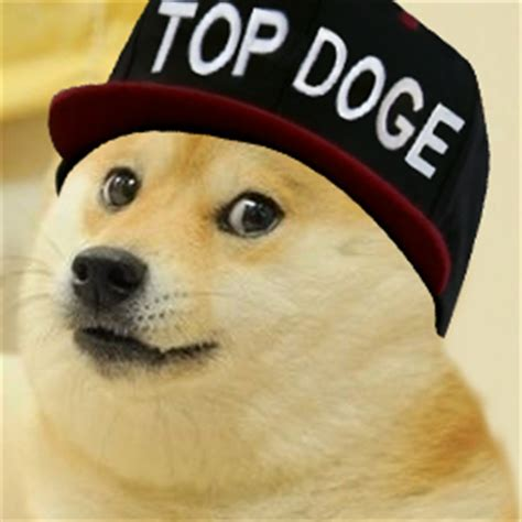 Best Doge Memes - top doge doge know your meme