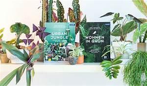 Wohnen In Grün : green oasis urban jungle bloggers adreyn 39 aline ~ Markanthonyermac.com Haus und Dekorationen