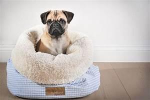 Hunde Sachen Kaufen : kuschelsack blau gr s m eleganter wohlig w rmender kuschelsack f r deinen welpen der ~ Watch28wear.com Haus und Dekorationen