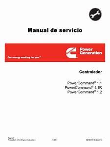 Manual De Servicio Power Comand  Indio Pdf