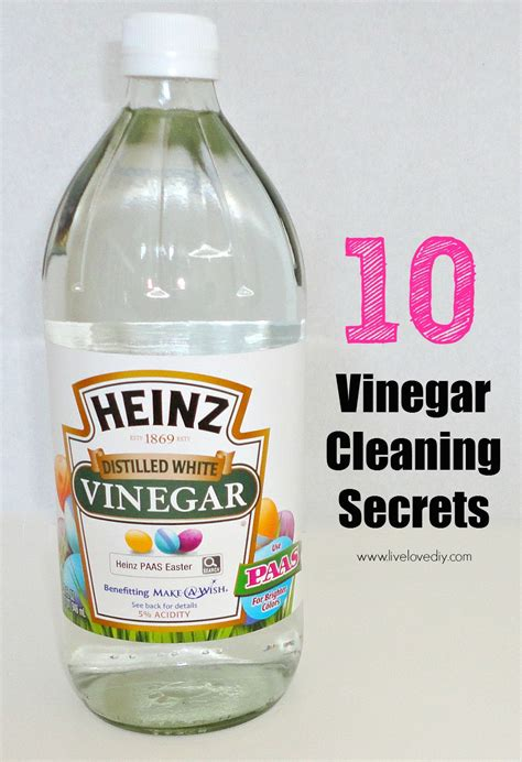 steam clean with vinegar livelovediy 10 vinegar cleaning secrets