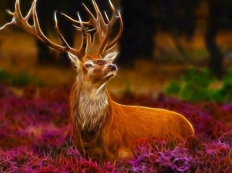 nice animals fractal   photo