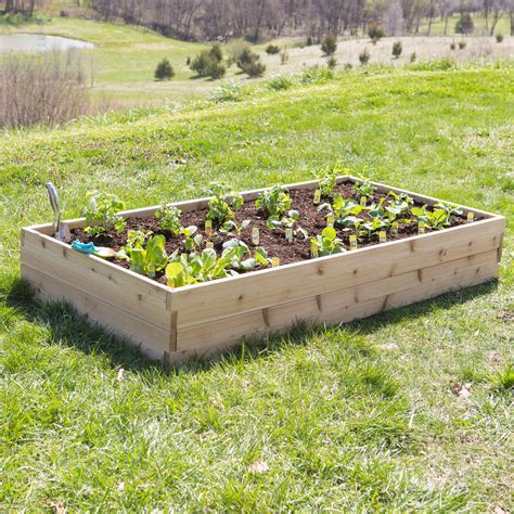 Raised Bed & Container Gardening Hayneedle