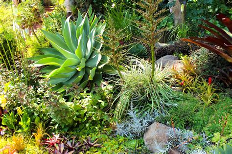 Stunning San Francisco Fling Garden Tour Of My Dream