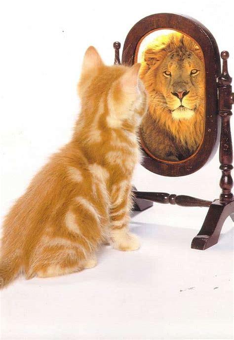 tips  obtener  mantener la confianza en uno mismo