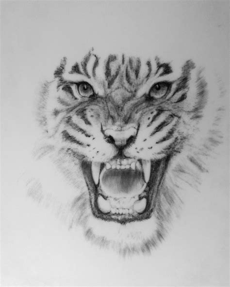 Épinglé par Mons Ink Custom Tattoos sur Tattoos | Tiger tattoo design, Tiger tattoo et Mens