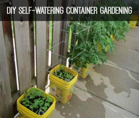 diy self watering container gardening homestead survival