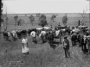 Glass plate negative panorama | Photo of the Day ...
