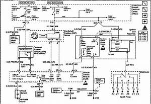 94 Gmc Sierra Alternator Wiring Diagram