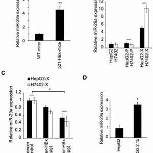 a a wound healing assay was performed on hepg2 cells 1 With stable 5v from old cells