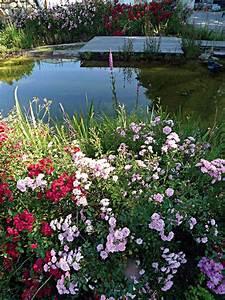 Garten Mit Teich : produkte schwimmteich teichfolie teichfilter oder gartenpflanzen mit naturagart teiche ~ Buech-reservation.com Haus und Dekorationen