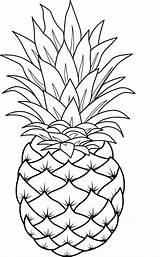 Coloring Pineapple Pineapples Sheets Frutas Dibujos Pina Popular Gravado Vidrio Bordado Fruta Pintar Colorear Pintura Tela Pdf Fruits sketch template