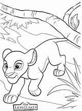 Lion Guard Coloring Kiara Leon Colorear Guardia Kion Leeuwenwacht Dibujos Rey Kleurplaat Sheets Simba Disney Imagenes Fuli Leeuwin King Popular sketch template