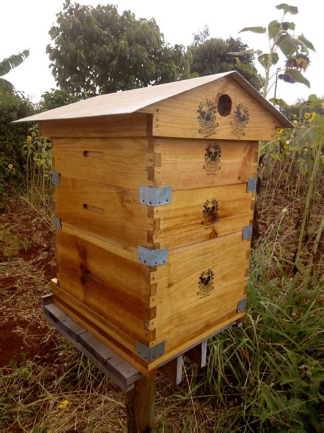 Backyard Honey Bee Hive by Backyard Beehives Can Offer Farmers 13 Per Cent Increase