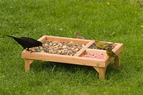 top 10 best bird feeders design for me