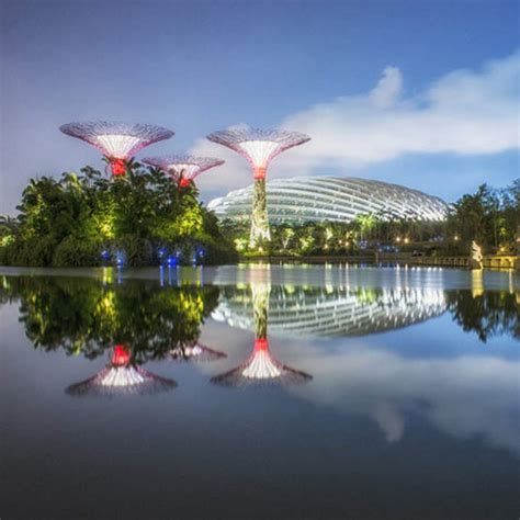 gardens by the bay ceo gardens by the bay by grant associates and wilkinson eyre wordlesstech