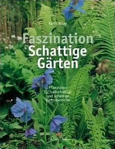 Pflanzen Für Trockene Schattige Standorte : kr uter f r halbschattige und schattige standorte ~ Michelbontemps.com Haus und Dekorationen