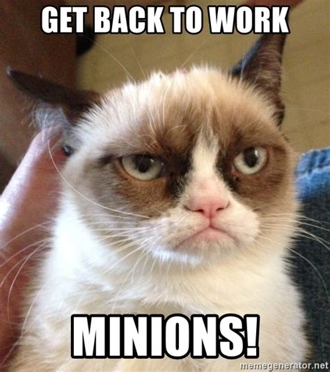 Get Back To Work Meme - get back to work minions grumpy cat 2 meme generator