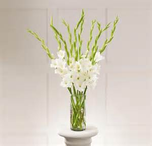 flower arrangement gladiola gladiolas gladiola flowers carithers flowers
