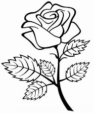 Best Rose Coloring Pages Ideas And Images On Bing Find What You