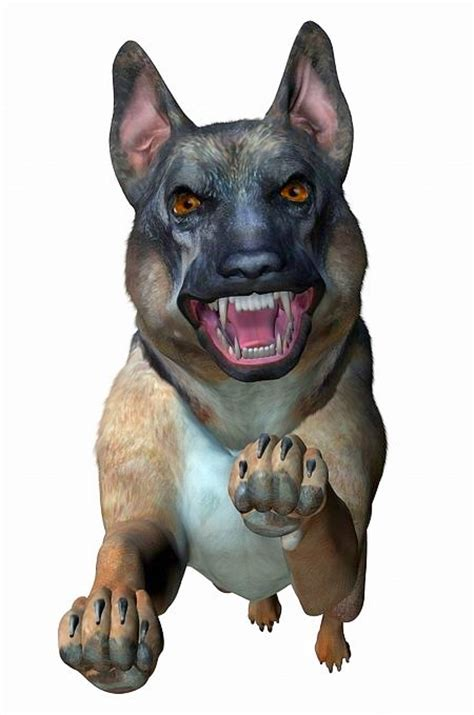 dog spray pepper attack paso el dogs angry doido cachorro german shepherd title dangerous bite animal shipped carefully restrictions sprays